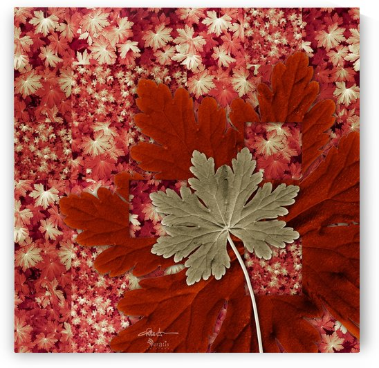 Geranium Leaves in Green & Red 1x1 by Veratis Editions