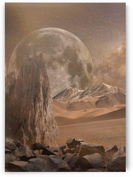 Lost in Venus Desert by Artistic Paradigms