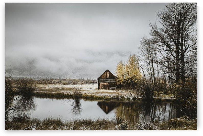 The Cabin by Sebastian Dietl