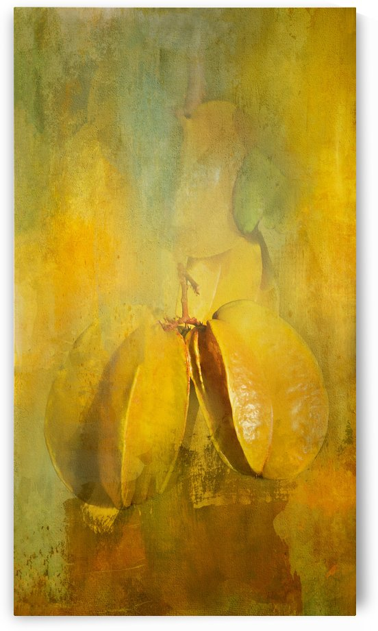 Averrhoa Carombola Star Fruit by HH Photography of Florida