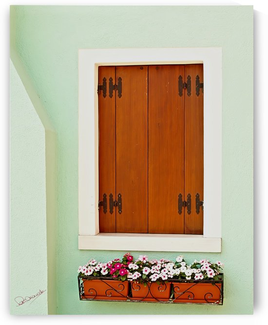 Burano Window Box by Shadow and Form