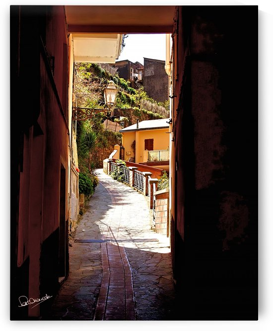 Cinque Terre Back Street by Shadow and Form