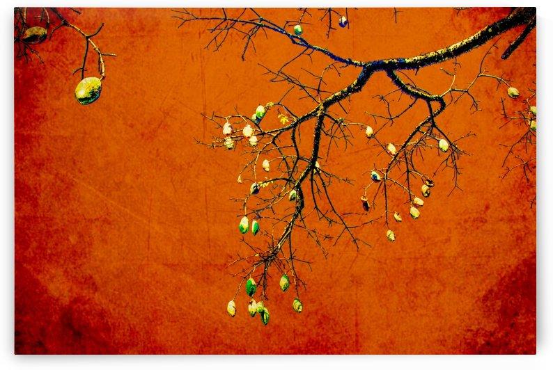 Tree VIII by Carlos Wood