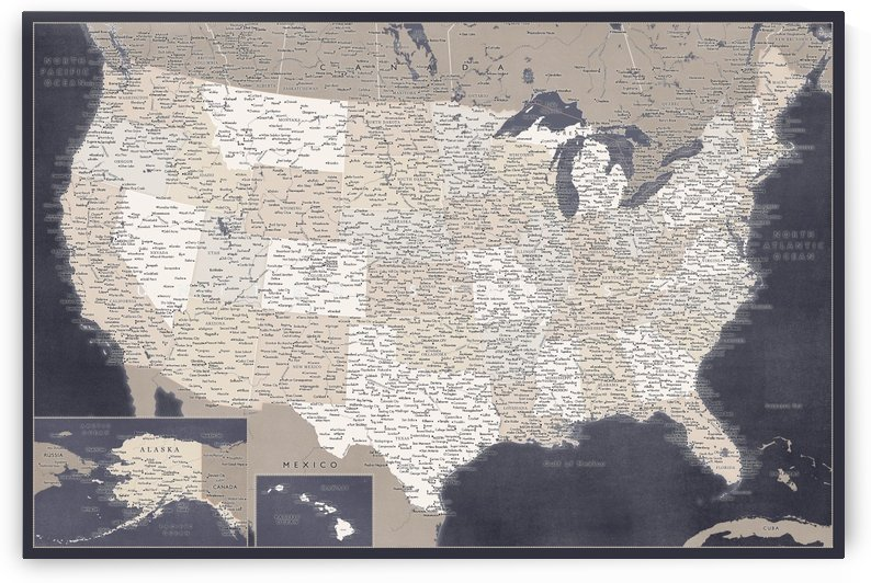 Detailed map of the USA in blue and brown by blursbyai