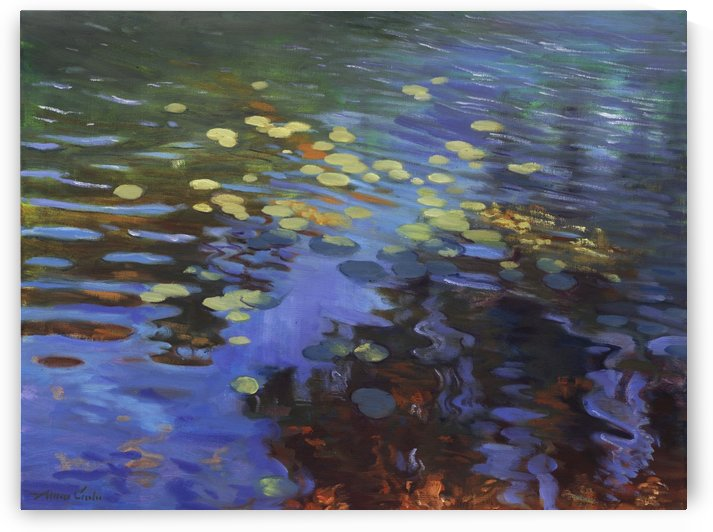 Waterlilies by Alison Cote