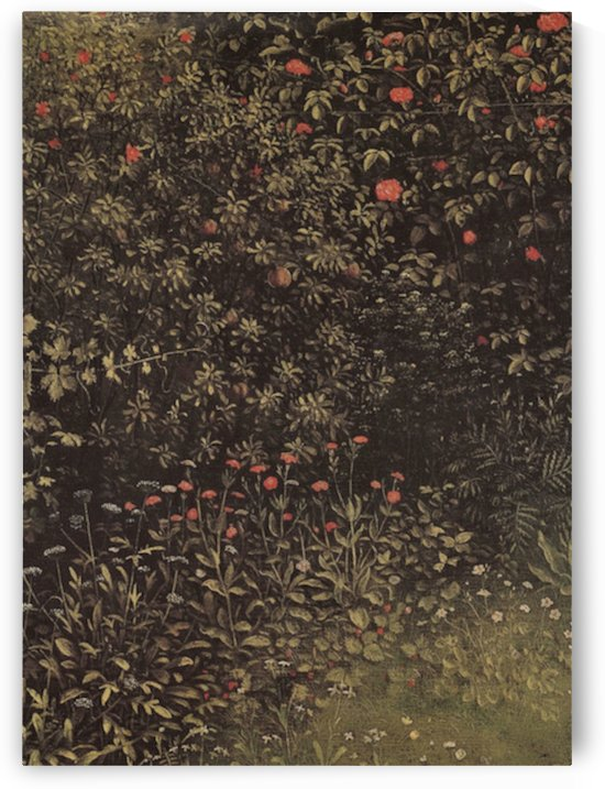 Flowering shrubs and plants by Jan Van Eyck by Jan Van Eyck