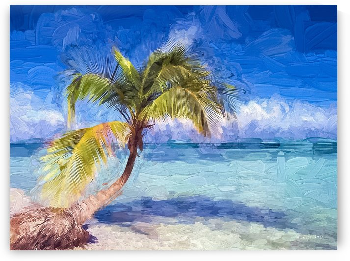 Palm Summer by A WYN CHANCE