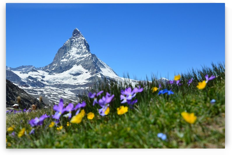 matterhorn alpine zermatt mountains by Shamudy
