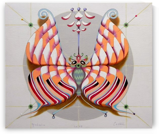 Circular butterfly   by federicocortese