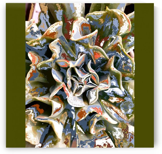 Cactus Abstract 200402 by BotanicalArt ca