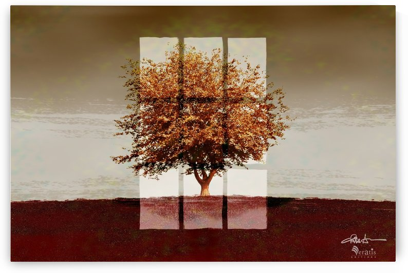 Window on a Sienna Tree 3x2 by Veratis Editions