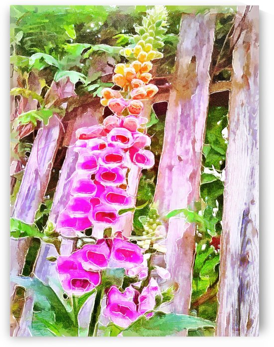 Foxglove In The Shade by Leslie Montgomery