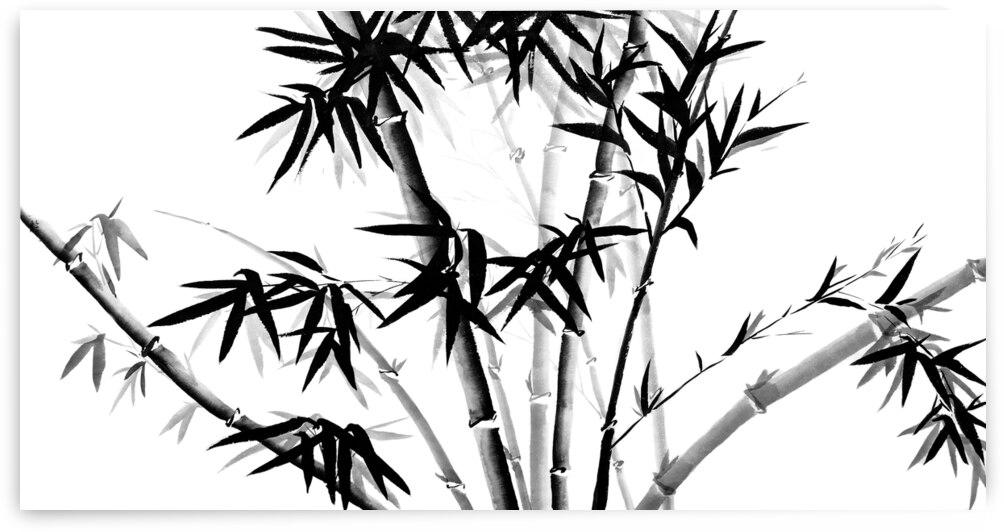 Bamboo by Birgit Moldenhauer