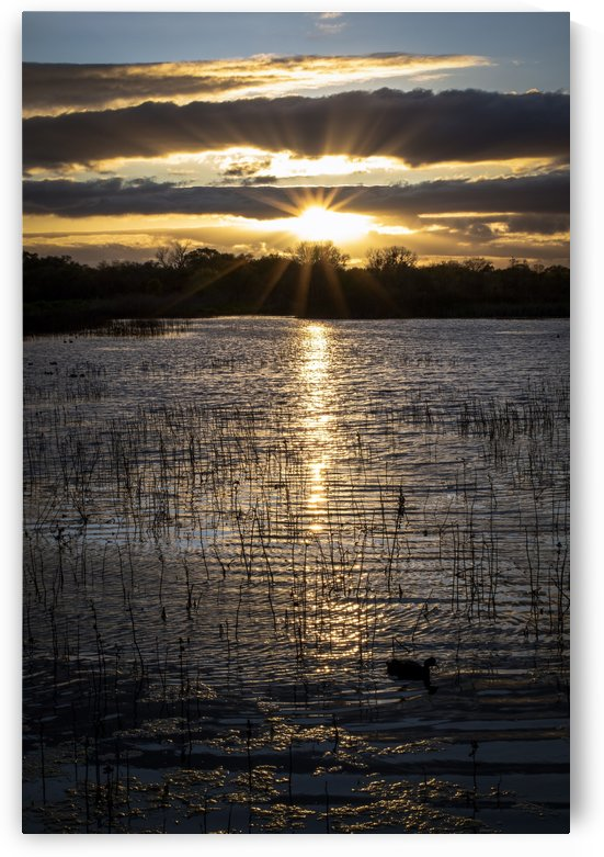 Sunset Cosumnes River Preserve by Gary Geddes