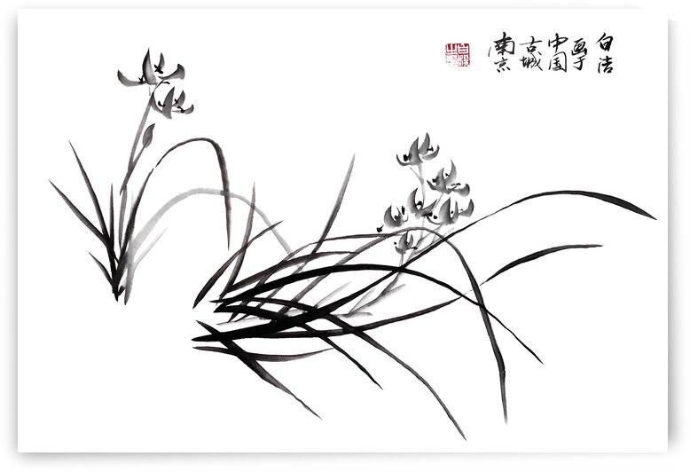 Chinese Iris in Spring by Birgit Moldenhauer
