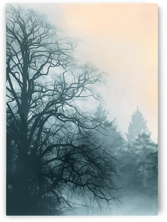 Foggy Pine Forest by Artistic Paradigms