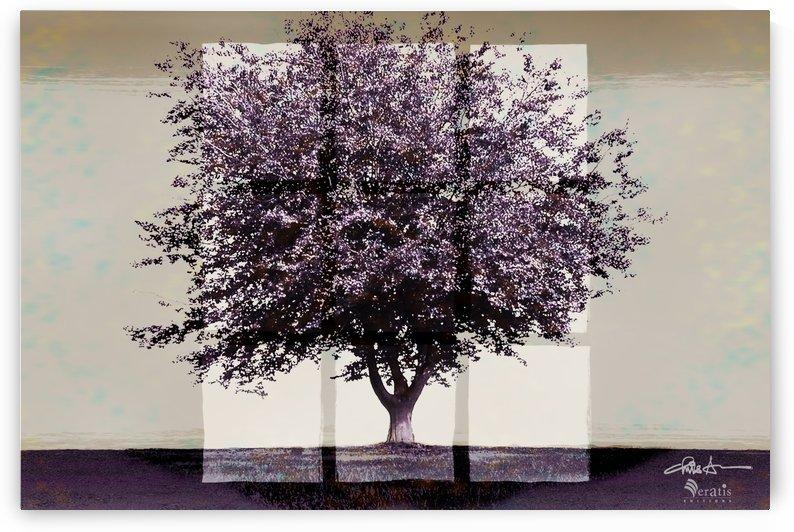 Window2 on a Purple Tree 3x2 by Veratis Editions