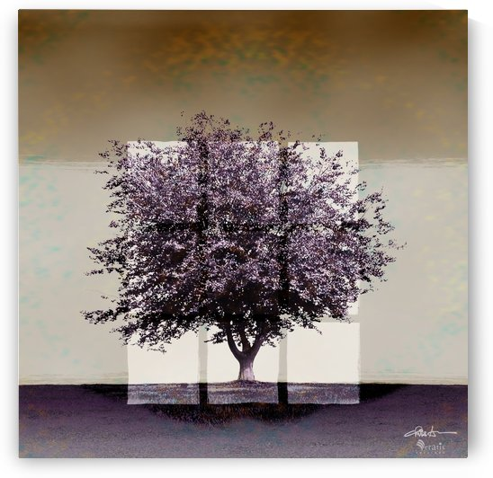 Window2 on a Purple Tree 1x1 by Veratis Editions