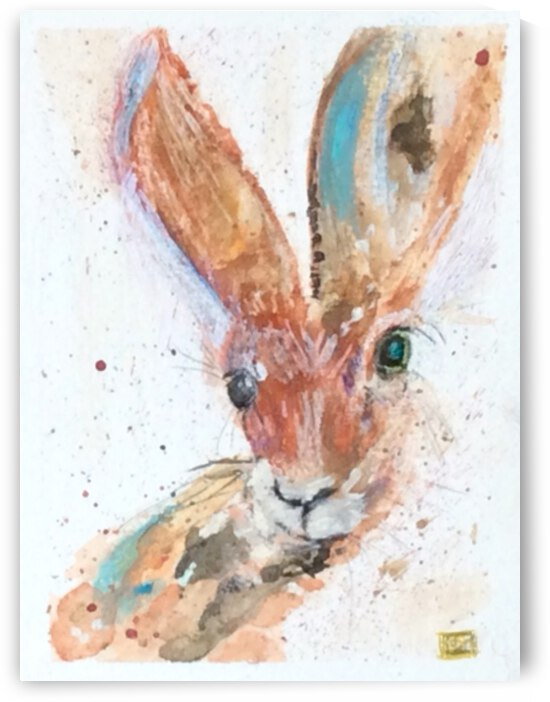 Nut Brown Hare  by Zaramar Paintings