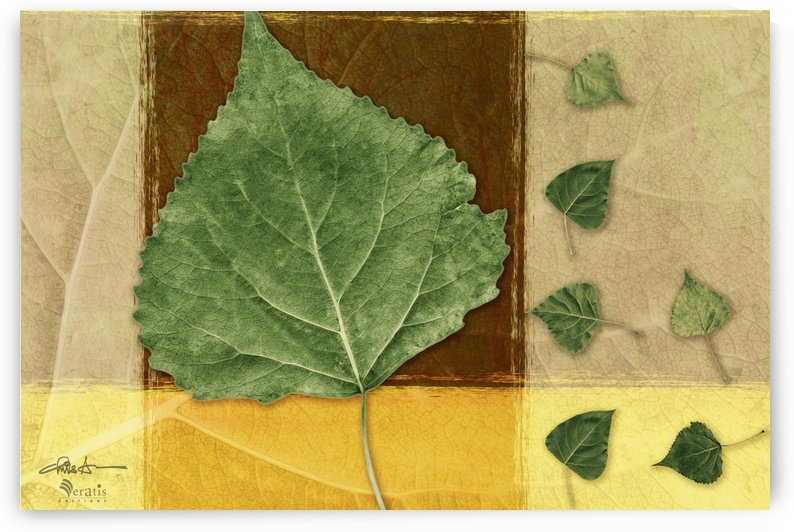 Leaves2 in Chocolate & Amber 3x2 by Veratis Editions