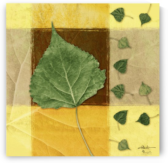 Leaves2 in Chocolate & Amber 1x1 by Veratis Editions