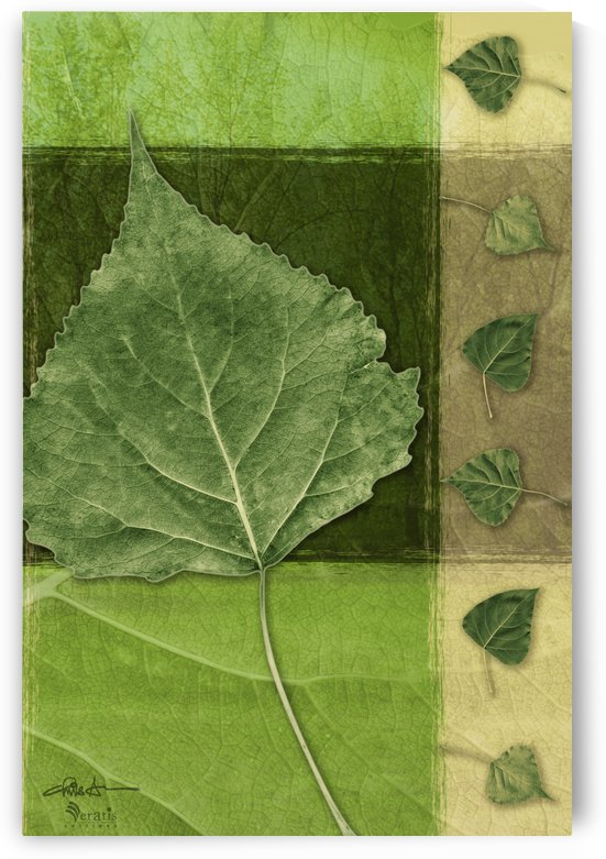 Leaves2 on Forest & Green 2x3 by Veratis Editions