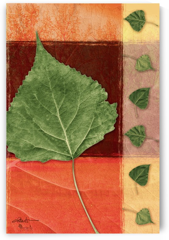 Leaves2 on Sienna & Salmon 2x3 by Veratis Editions