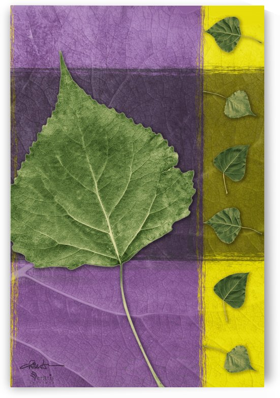 Leaves2 on Indigo & Amethyst 2x3 by Veratis Editions