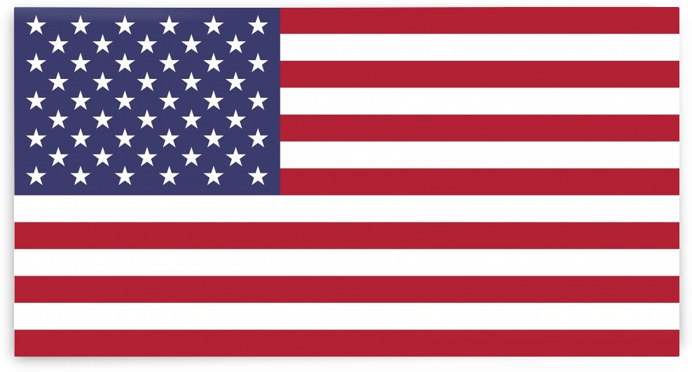 United States of America Flag by Fun With Flags