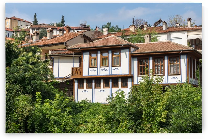 Old Town Plovdiv - Lush Green Hillside Villa in the City Center by GeorgiaM