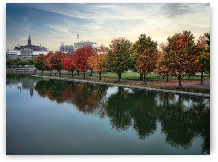 Fall Reflections by Robert Knight