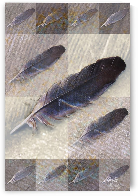 Feathers on Taupe 2x3 by Veratis Editions
