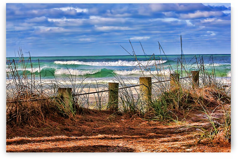 The Allure Of The Gulf by HH Photography of Florida