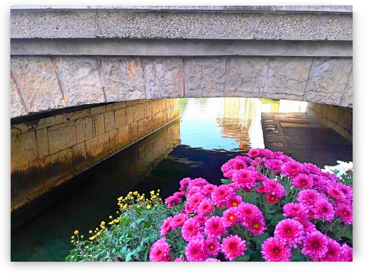 France Water Under The Bridge by Gina Lafont
