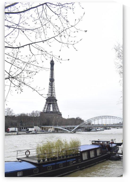 Eiffel tower Paris by Bayaaz