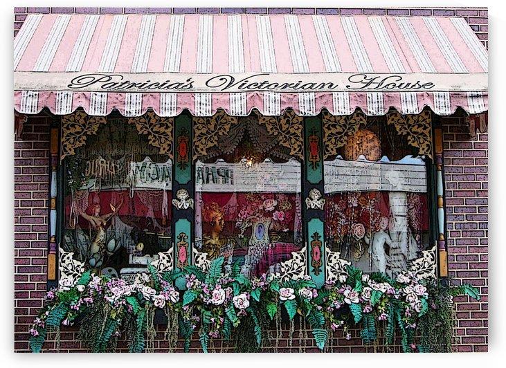 Window Art by Lisa Bates