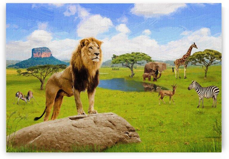 Lion animals of Africa 2 by Radiy Bohem