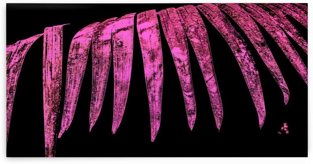 Fern Leaf II by Carlos Wood