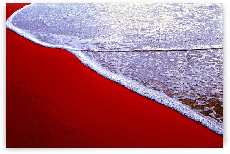 Beach V by Carlos Wood