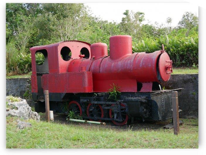 Old Japanese train by On da Raks