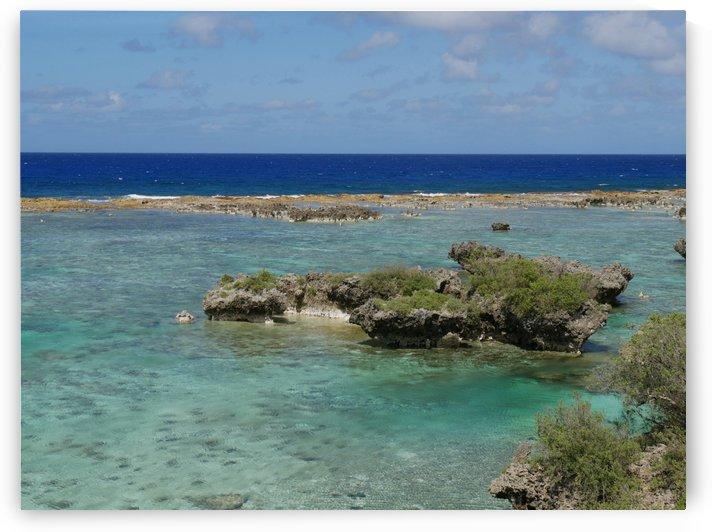 Tropical Beach by On da Raks