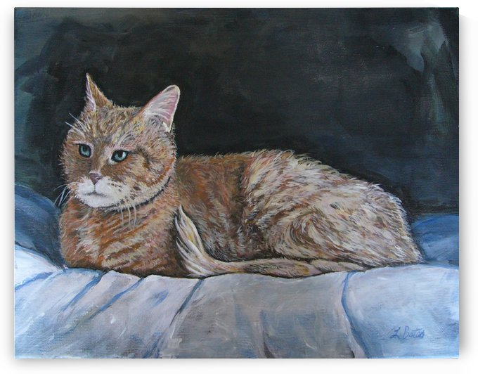 catportrait by Lisa Bates