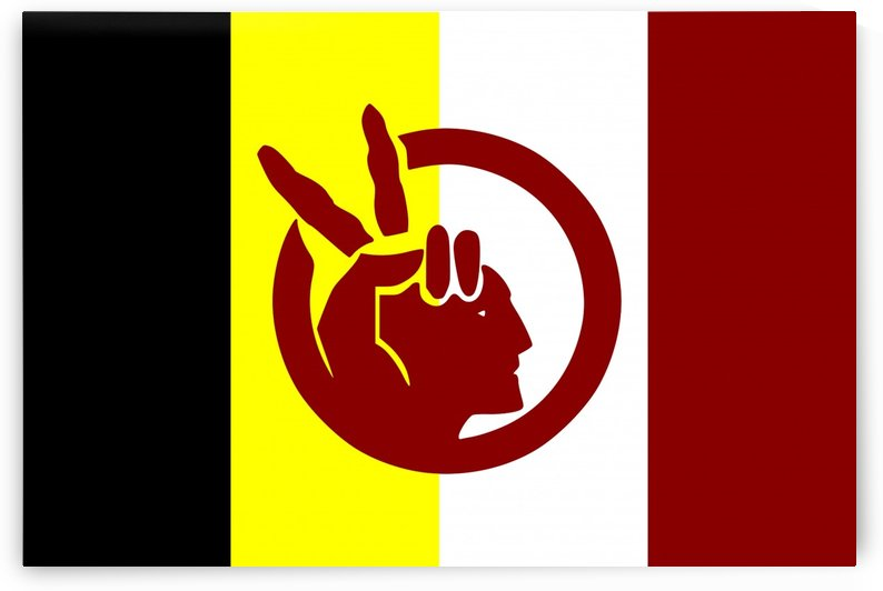American Indian Movement Flag by Fun With Flags
