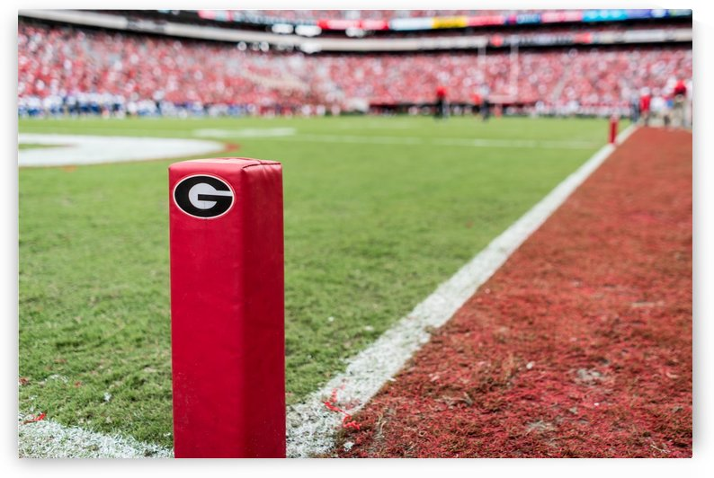 University of Georgia Football   Athens GA 3055 by @ThePhotourist