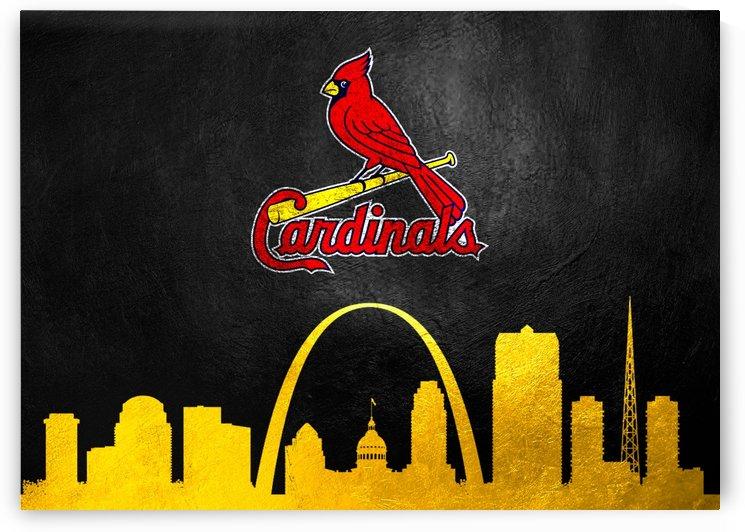 Saint Louis Cardinals by ABConcepts