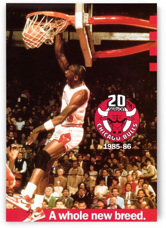 Michael Jordan Dunk by Row One Brand