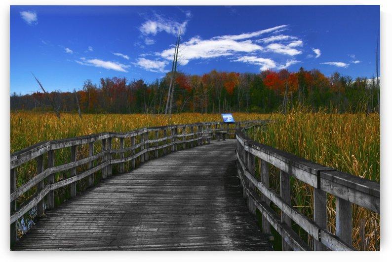 Bordwalk by Chris Dero