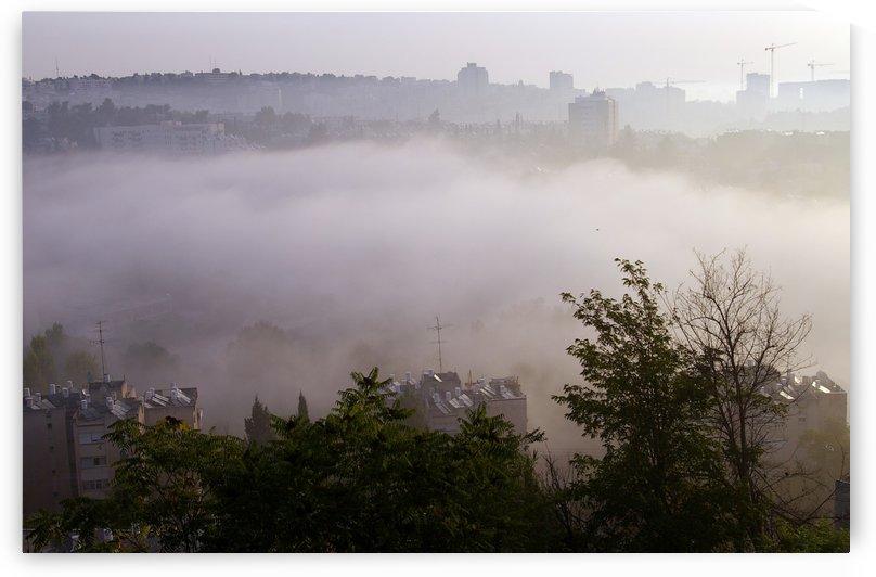 Foggy morning by AndreiPodelko