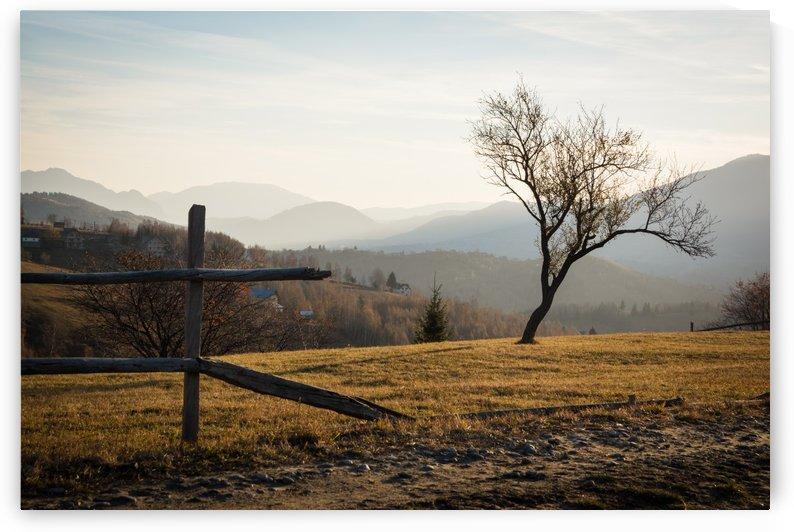 Rural Dream Landscape by Claudia Tudosie