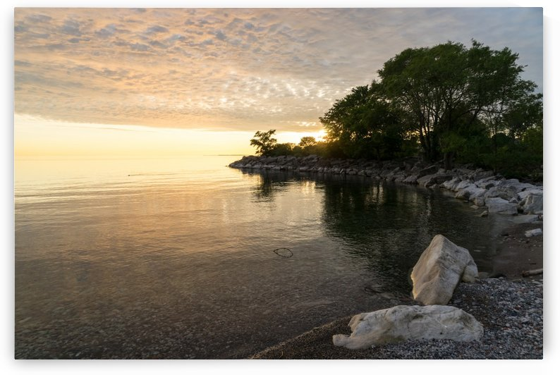 Green and Glossy Summer - Sunrise on the Shore of Lake Ontario by GeorgiaM